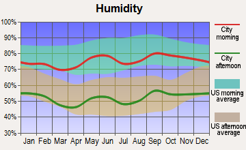 Midland, Texas humidity