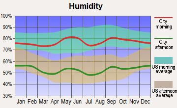 Paducah, Texas humidity