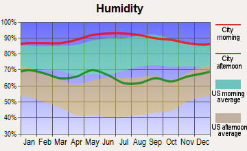 Rancho Banquete, Texas humidity