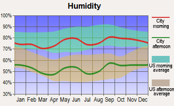 Robert Lee, Texas humidity