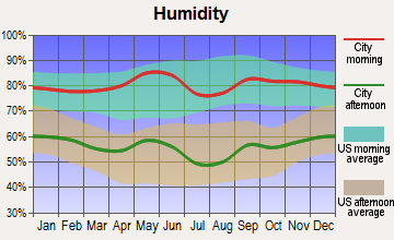 St. Jo, Texas humidity