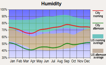 Study Butte-Terlingua, Texas humidity