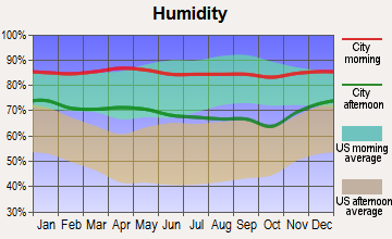 West Columbia, Texas humidity