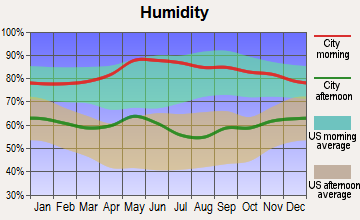 West Lake Hills, Texas humidity
