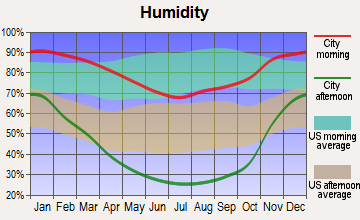 Turlock, California humidity