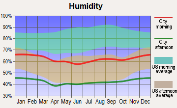 Twentynine Palms Base, California humidity