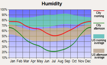 Manti, Utah humidity