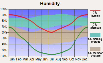 West Bishop, California humidity