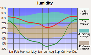 Basin City, Washington humidity