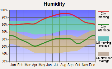 Weston, West Virginia humidity