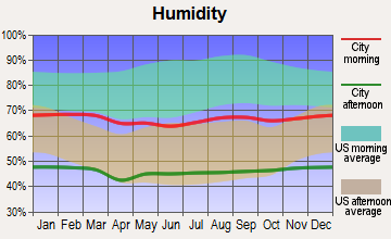 Big Bear City, California humidity