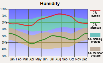 Gauley Bridge, West Virginia humidity