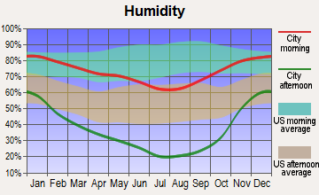 Big Valley, California humidity