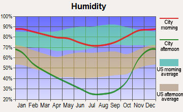 Central Shasta, California humidity