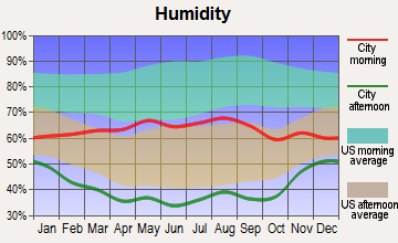 Silverthorne, Colorado humidity