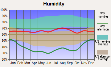 Leadville North, Colorado humidity