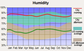 Melbourne Village, Florida humidity