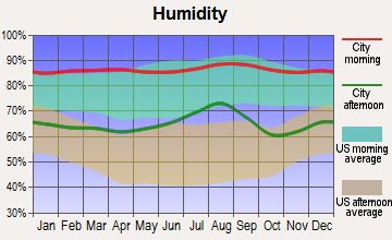 Tyndall AFB, Florida humidity