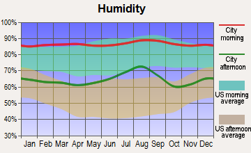 Wewahitchka, Florida humidity