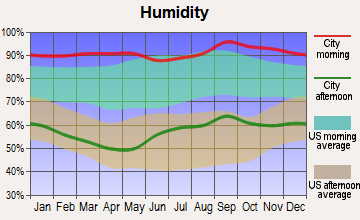 Bronson, Florida humidity