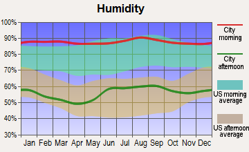 South and East Osceola, Florida humidity