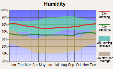 Wailua Homesteads, Hawaii humidity