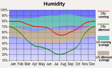 Castleford, Idaho humidity