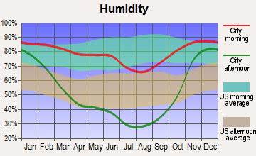 Bovill, Idaho humidity