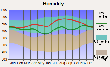 Hooper Bay, Alaska humidity