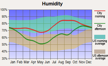 Kaltag, Alaska humidity