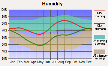 Knik-Fairview, Alaska humidity