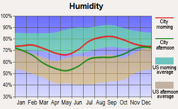 Lowell Point, Alaska humidity