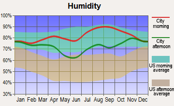 Mountain Village, Alaska humidity