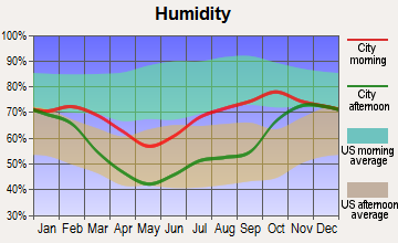Northway, Alaska humidity