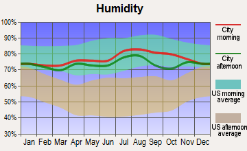 Savoonga, Alaska humidity