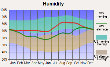 Shungnak, Alaska humidity