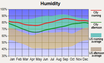Thorne Bay, Alaska humidity