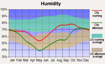 Venetie, Alaska humidity