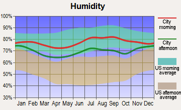 Anchor Point, Alaska humidity