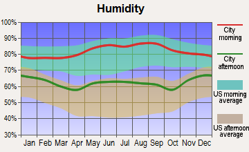 Holton, Kansas humidity