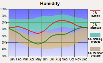 Chickaloon, Alaska humidity