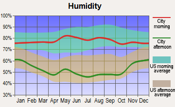 Scott City, Kansas humidity