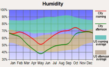 Dot Lake Village, Alaska humidity