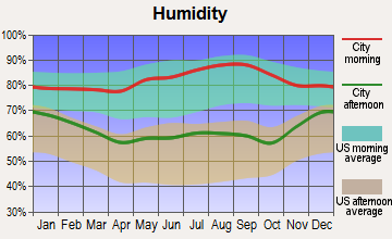 Centertown, Kentucky humidity
