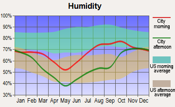 Fort Yukon, Alaska humidity