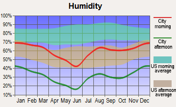 Peeples Valley, Arizona humidity