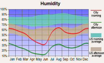 Pirtleville, Arizona humidity