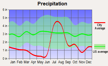 Rio Rico Southwest, Arizona average precipitation