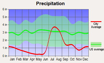 Sierra Vista Southeast, Arizona average precipitation