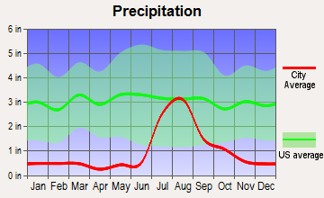 Springerville, Arizona average precipitation